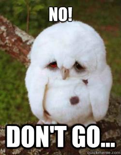 Meme White Sad Owl