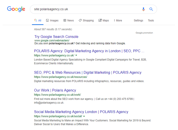 Google Site Search Example