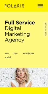 SEO-Agency-Pixel2-Responsive