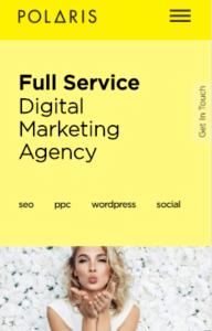 SEO-Agency-IphoneX-Responsive